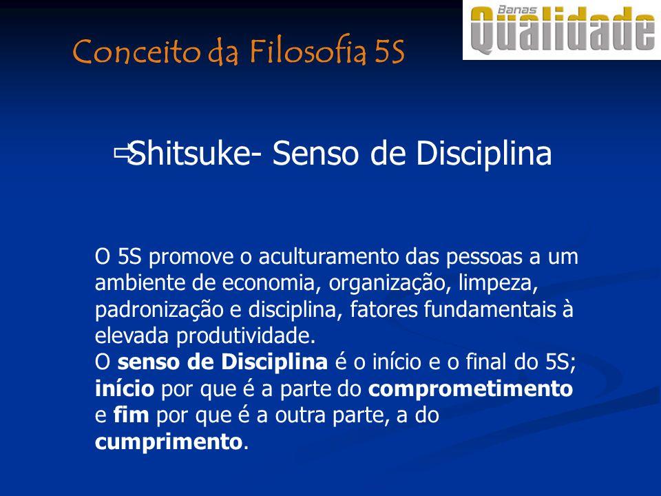 O 5S promove o aculturamento das pessoas a um ambiente de economia, organização, limpeza, padronização e disciplina, fatores fundamentais à elevada pr