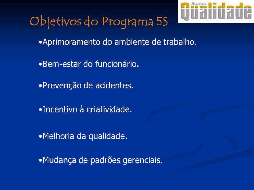 Objetivos do Programa 5S Bem-estar do funcionário. Aprimoramento do ambiente de trabalho. Prevenção de acidentes. Incentivo à criatividade. Melhoria d