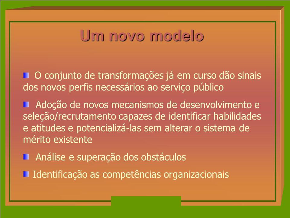 Um novo modelo O conjunto de transformações já em curso dão sinais dos novos perfis necessários ao serviço público Adoção de novos mecanismos de desen