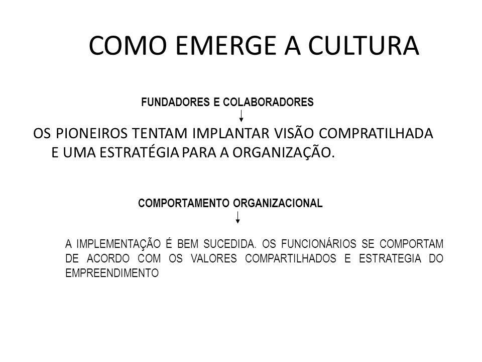 COMO EMERGE A CULTURA OS PIONEIROS TENTAM IMPLANTAR VISÃO COMPRATILHADA E UMA ESTRATÉGIA PARA A ORGANIZAÇÃO. FUNDADORES E COLABORADORES COMPORTAMENTO