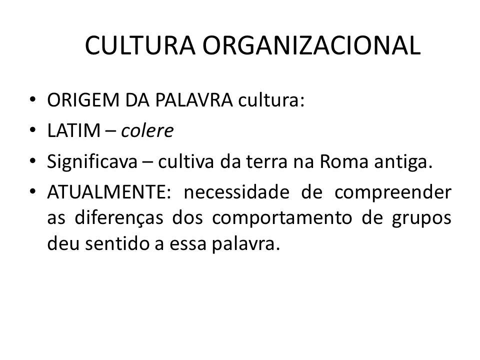 CULTURA ORGANIZACIONAL ORIGEM DA PALAVRA cultura: LATIM – colere Significava – cultiva da terra na Roma antiga. ATUALMENTE: necessidade de compreender