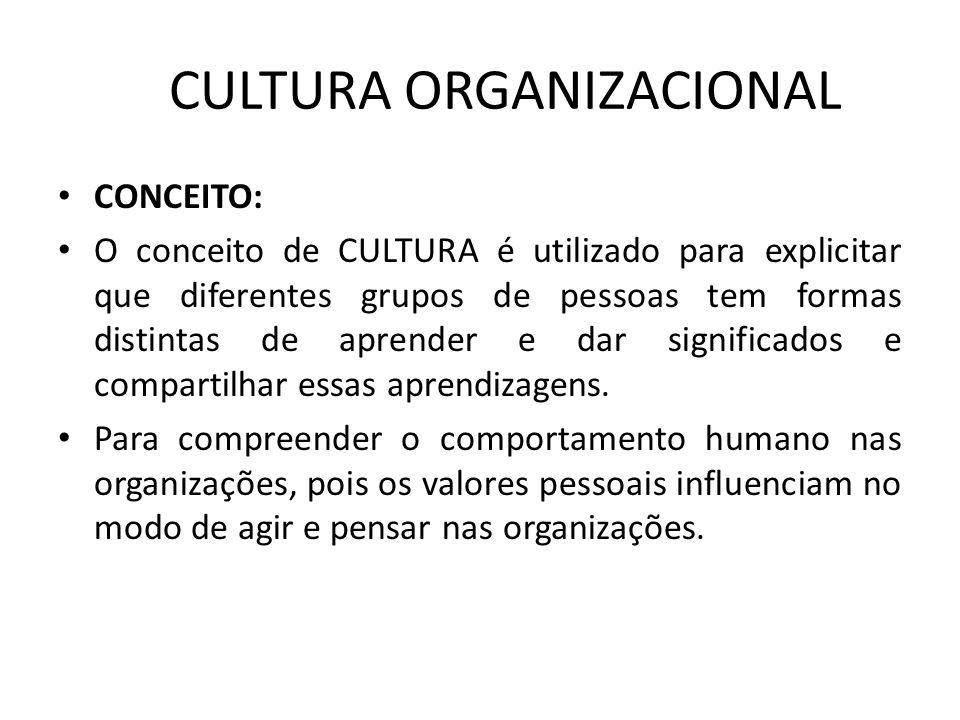 CULTURA ORGANIZACIONAL CONCEITO: O conceito de CULTURA é utilizado para explicitar que diferentes grupos de pessoas tem formas distintas de aprender e
