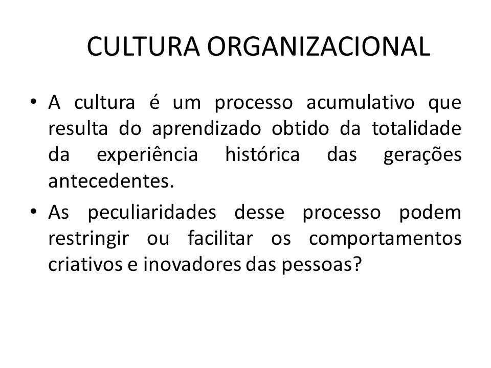 CULTURA ORGANIZACIONAL A cultura é um processo acumulativo que resulta do aprendizado obtido da totalidade da experiência histórica das gerações antec