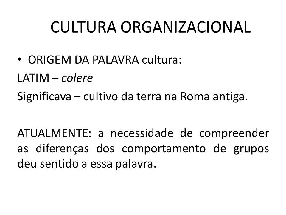O QUE É CULTURA ORGANIZACIONAL Crenças, valores, ideologias, hábitos, costumes, rotinas, rituais, ética e comportamentos que são determinantes do grupo.