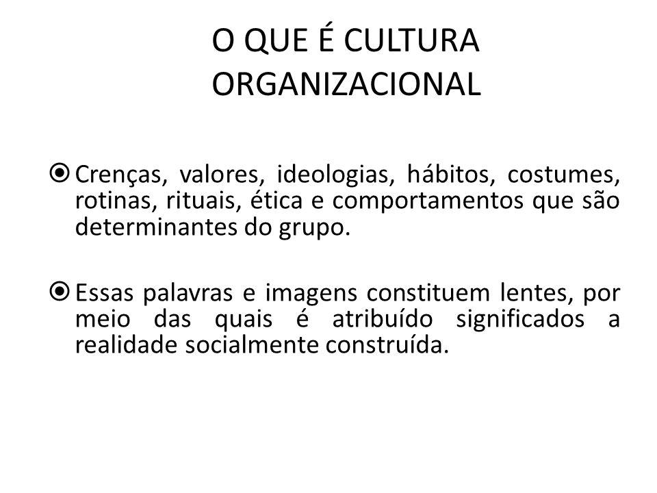 CULTURA ORGANIZACIONAL CONCEPÇÃO SOCIOLÓGICA Construção da realidade de determinado agrupamento social.