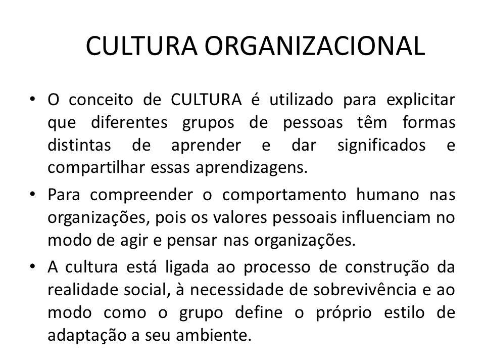 CULTURA ORGANIZACIONAL O conceito de CULTURA é utilizado para explicitar que diferentes grupos de pessoas têm formas distintas de aprender e dar signi