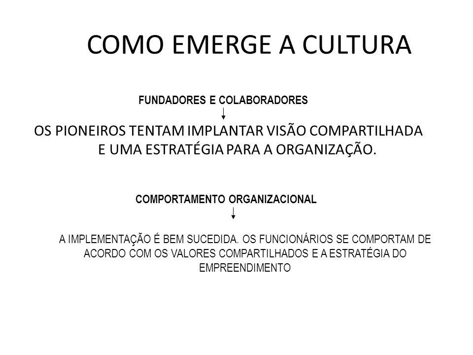 COMO EMERGE A CULTURA OS PIONEIROS TENTAM IMPLANTAR VISÃO COMPARTILHADA E UMA ESTRATÉGIA PARA A ORGANIZAÇÃO. FUNDADORES E COLABORADORES COMPORTAMENTO