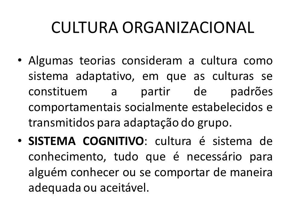 CULTURA ORGANIZACIONAL Algumas teorias consideram a cultura como sistema adaptativo, em que as culturas se constituem a partir de padrões comportament