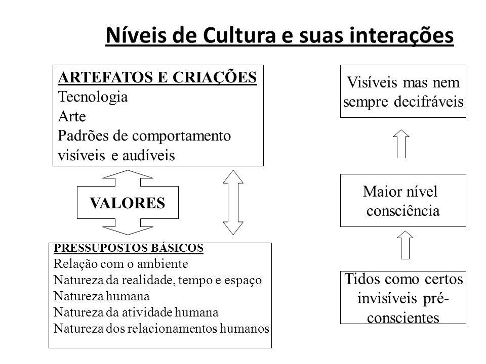 Níveis de Cultura e suas interações ARTEFATOS E CRIAÇÕES Tecnologia Arte Padrões de comportamento visíveis e audíveis PRESSUPOSTOS BÁSICOS Relação com