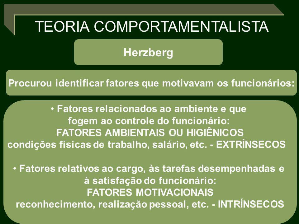 TEORIA COMPORTAMENTALISTA Herzberg Procurou identificar fatores que motivavam os funcionários: Fatores relacionados ao ambiente e que fogem ao control