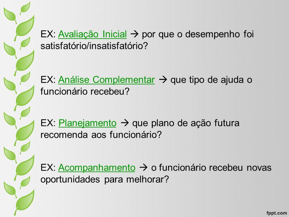 EX: Avaliação Inicial por que o desempenho foi satisfatório/insatisfatório? EX: Análise Complementar que tipo de ajuda o funcionário recebeu? EX: Plan