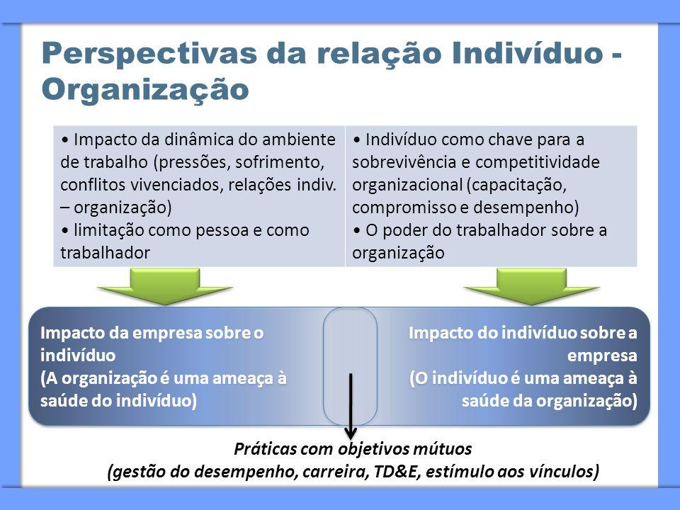 Perspectivas da relação Indivíduo - Organização Impacto da dinâmica do ambiente de trabalho (pressões, sofrimento, conflitos vivenciados, relações ind