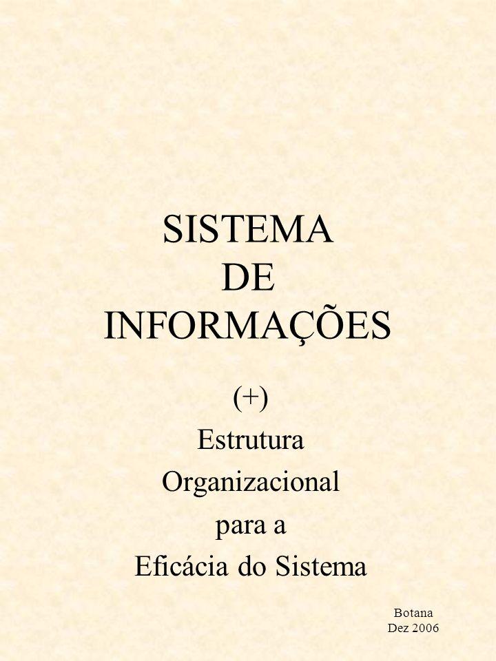 SISTEMA DE INFORMAÇÕES (+) Estrutura Organizacional para a Eficácia do Sistema Botana Dez 2006