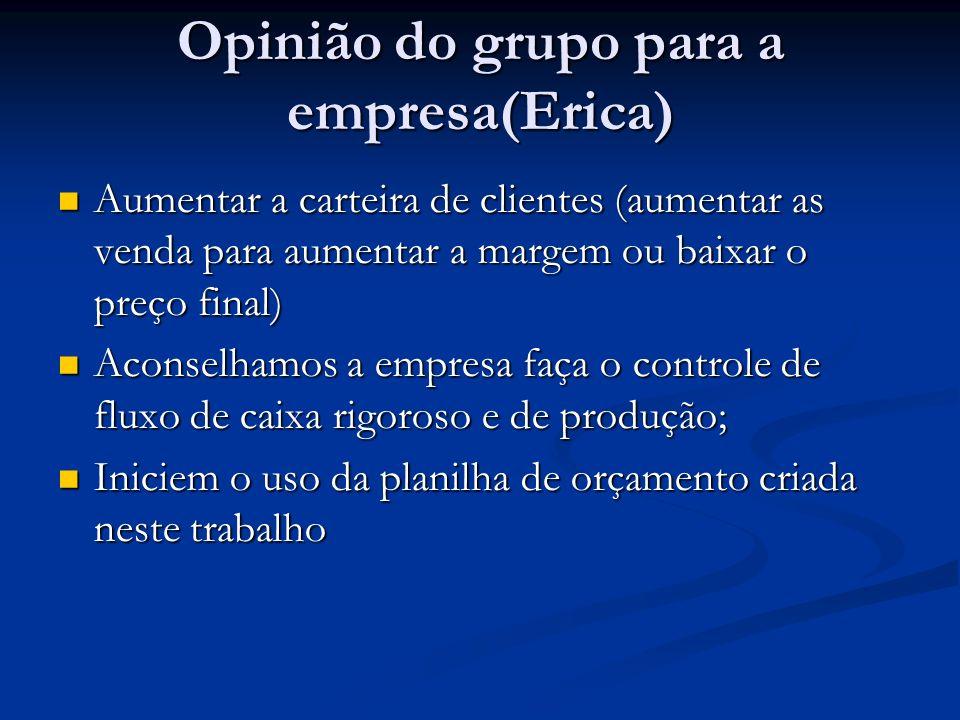Opinião do grupo para a empresa(Erica) Aumentar a carteira de clientes (aumentar as venda para aumentar a margem ou baixar o preço final) Aumentar a c