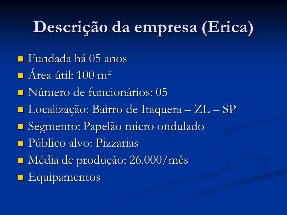 Descrição da empresa (Erica) Fundada há 05 anos Fundada há 05 anos Área útil: 100 m² Área útil: 100 m² Número de funcionários: 05 Número de funcionári