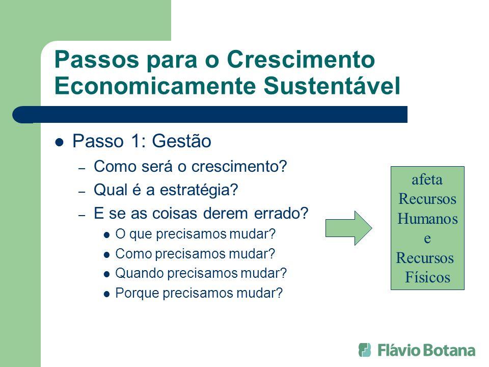 Passos para o Crescimento Economicamente Sustentável Passo 1: Gestão – Como será o crescimento? – Qual é a estratégia? – E se as coisas derem errado?