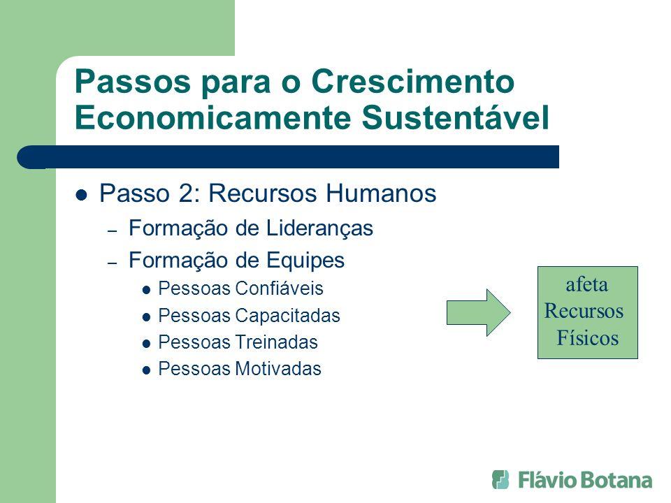 Passos para o Crescimento Economicamente Sustentável Passo 2: Recursos Humanos – Formação de Lideranças – Formação de Equipes Pessoas Confiáveis Pesso