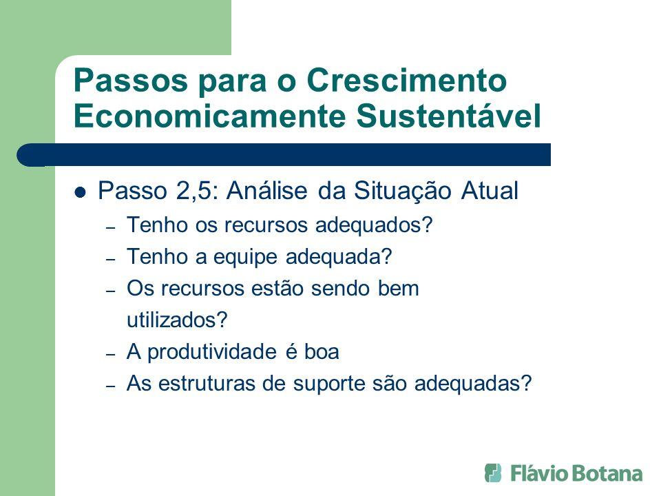 Passos para o Crescimento Economicamente Sustentável Passo 2,5: Análise da Situação Atual – Tenho os recursos adequados? – Tenho a equipe adequada? –