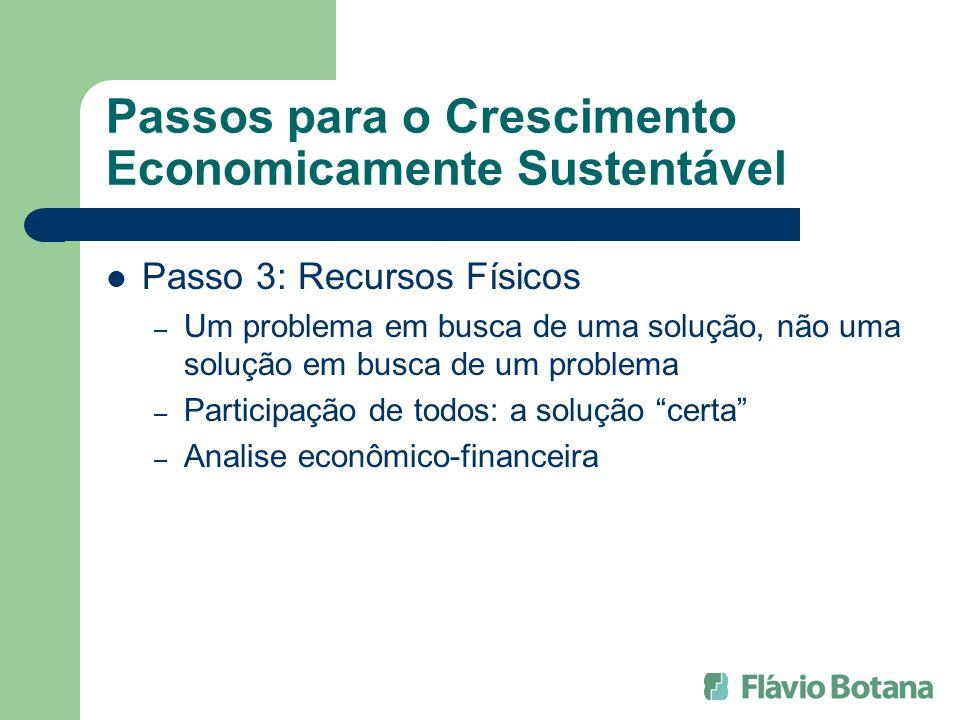 Passos para o Crescimento Economicamente Sustentável Passo 3: Recursos Físicos – Um problema em busca de uma solução, não uma solução em busca de um p