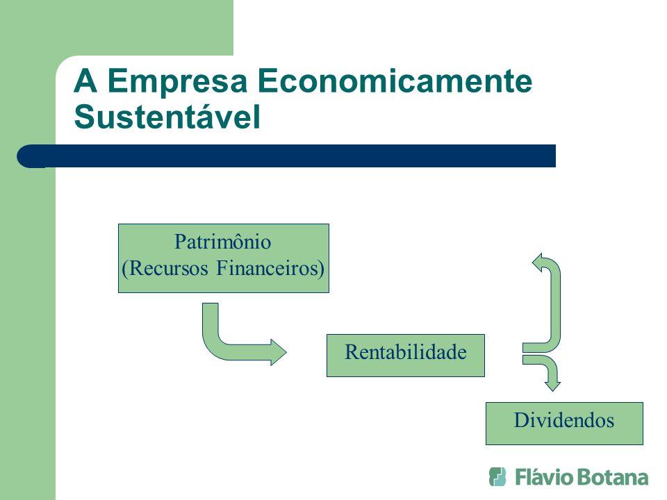 A Empresa Economicamente Sustentável Patrimônio (Recursos Financeiros) Rentabilidade Dividendos