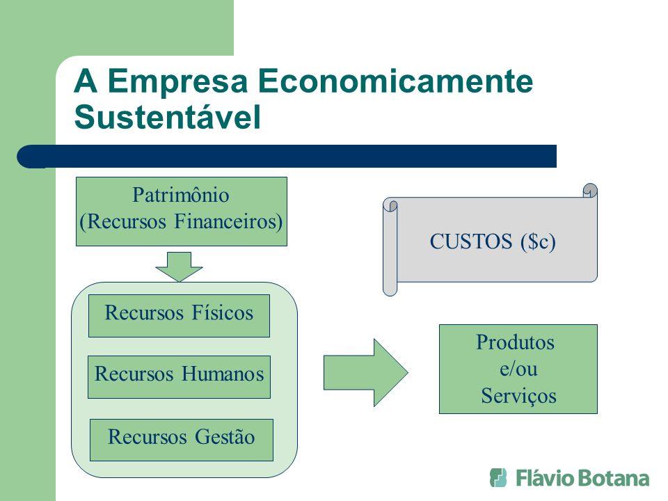 A Empresa Economicamente Sustentável Patrimônio (Recursos Financeiros) Recursos Físicos Produtos e/ou Serviços Recursos Humanos Recursos Gestão CUSTOS
