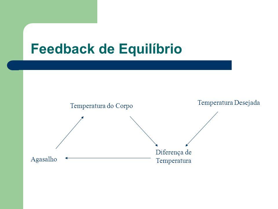 Feedback de Equilíbrio Temperatura do Corpo Diferença de Temperatura Agasalho Temperatura Desejada
