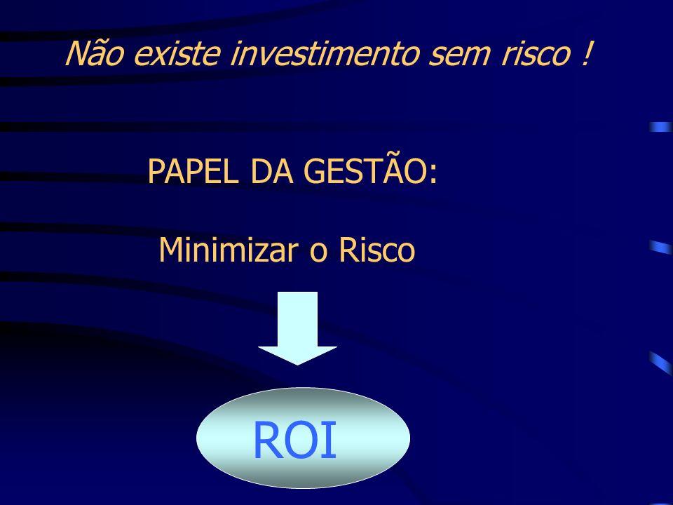 Não existe investimento sem risco ! PAPEL DA GESTÃO: Minimizar o Risco ROI