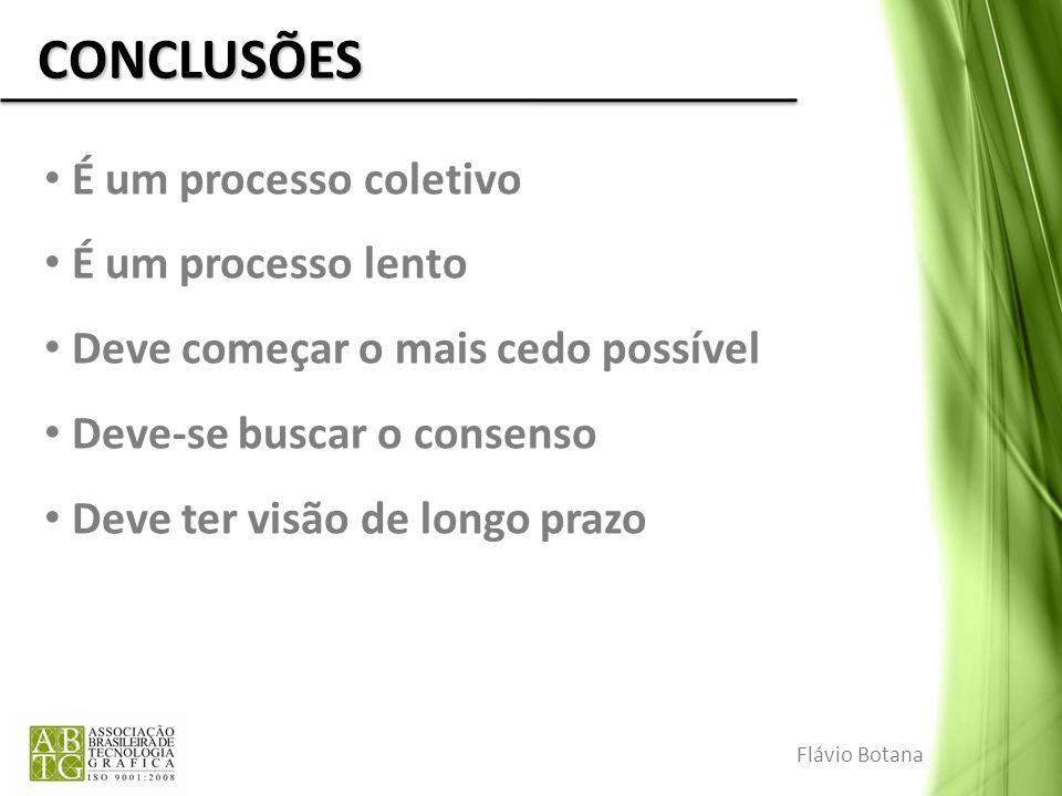 CONCLUSÕES É um processo coletivo É um processo lento Deve começar o mais cedo possível Deve-se buscar o consenso Deve ter visão de longo prazo Flávio