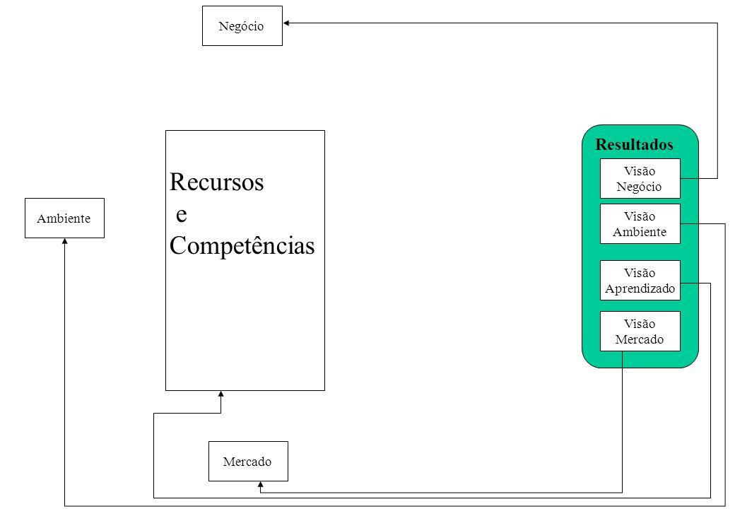 Visão Negócio Visão Ambiente Visão Aprendizado Visão Mercado Resultados Recursos e Competências