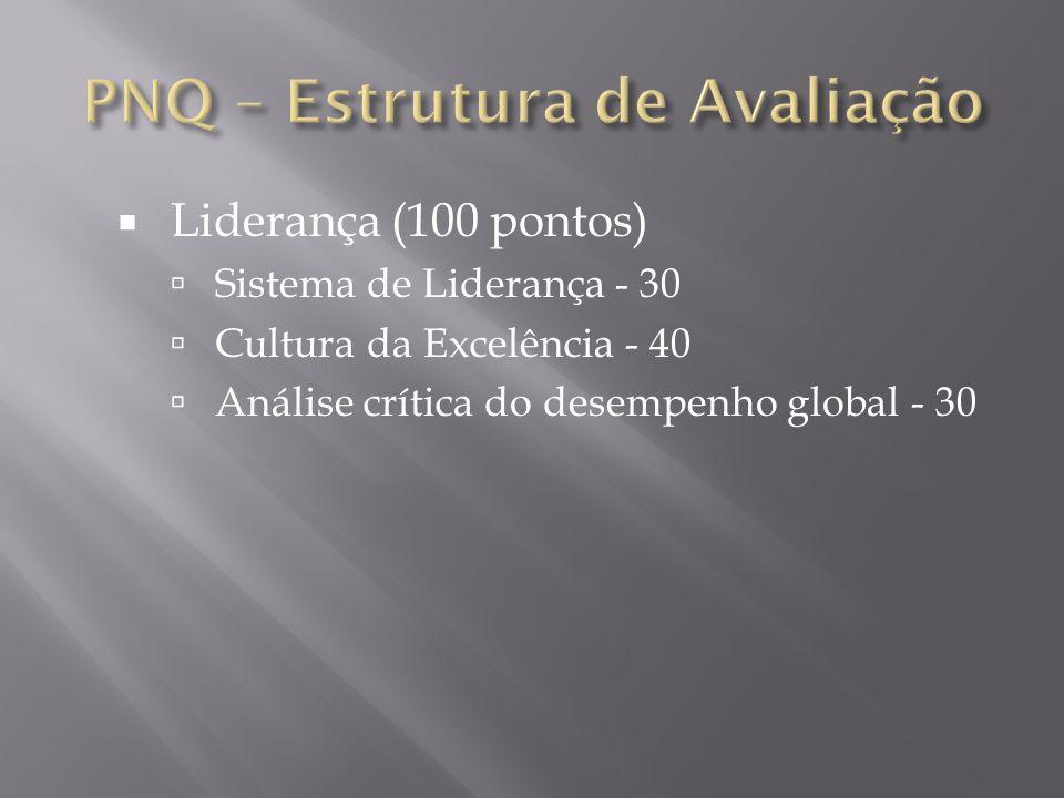 Liderança (100 pontos) Sistema de Liderança - 30 Cultura da Excelência - 40 Análise crítica do desempenho global - 30