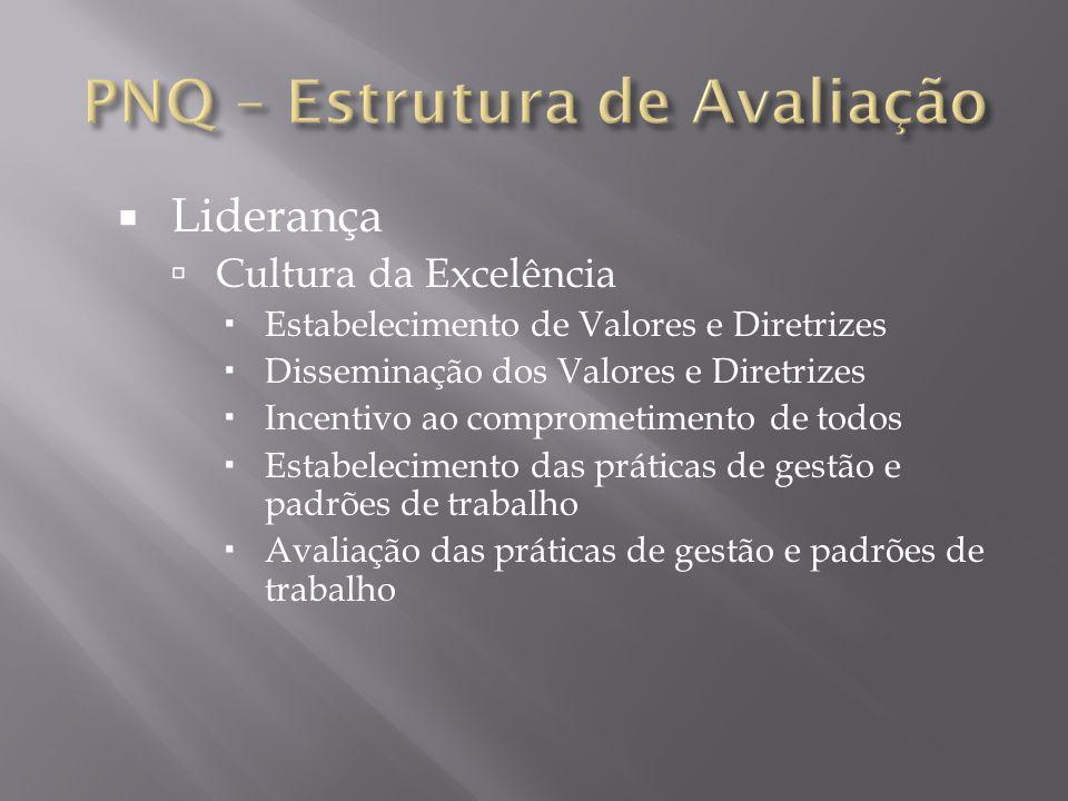 Liderança Cultura da Excelência Estabelecimento de Valores e Diretrizes Disseminação dos Valores e Diretrizes Incentivo ao comprometimento de todos Es