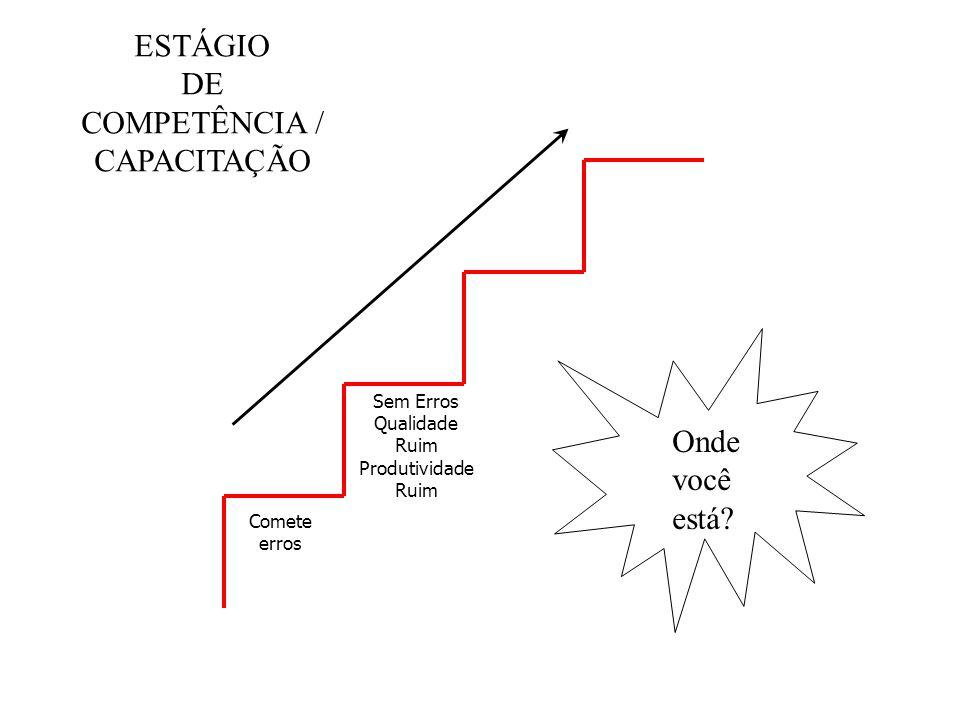 Comete erros Sem Erros Qualidade Ruim Produtividade Ruim ESTÁGIO DE COMPETÊNCIA / CAPACITAÇÃO Onde você está?