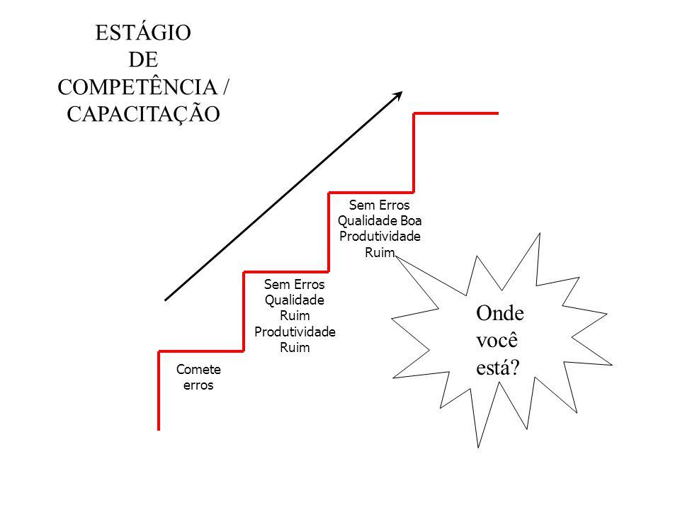 Comete erros Sem Erros Qualidade Ruim Produtividade Ruim Sem Erros Qualidade Boa Produtividade Ruim ESTÁGIO DE COMPETÊNCIA / CAPACITAÇÃO Onde você est