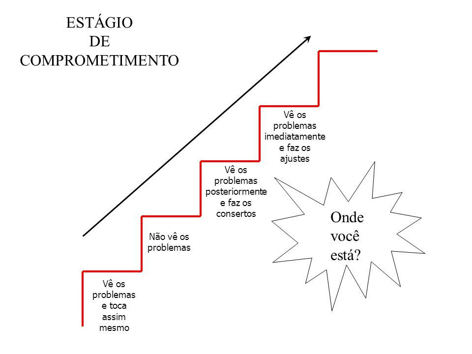 Vê os problemas e toca assim mesmo Não vê os problemas Vê os problemas posteriormente e faz os consertos Vê os problemas imediatamente e faz os ajuste
