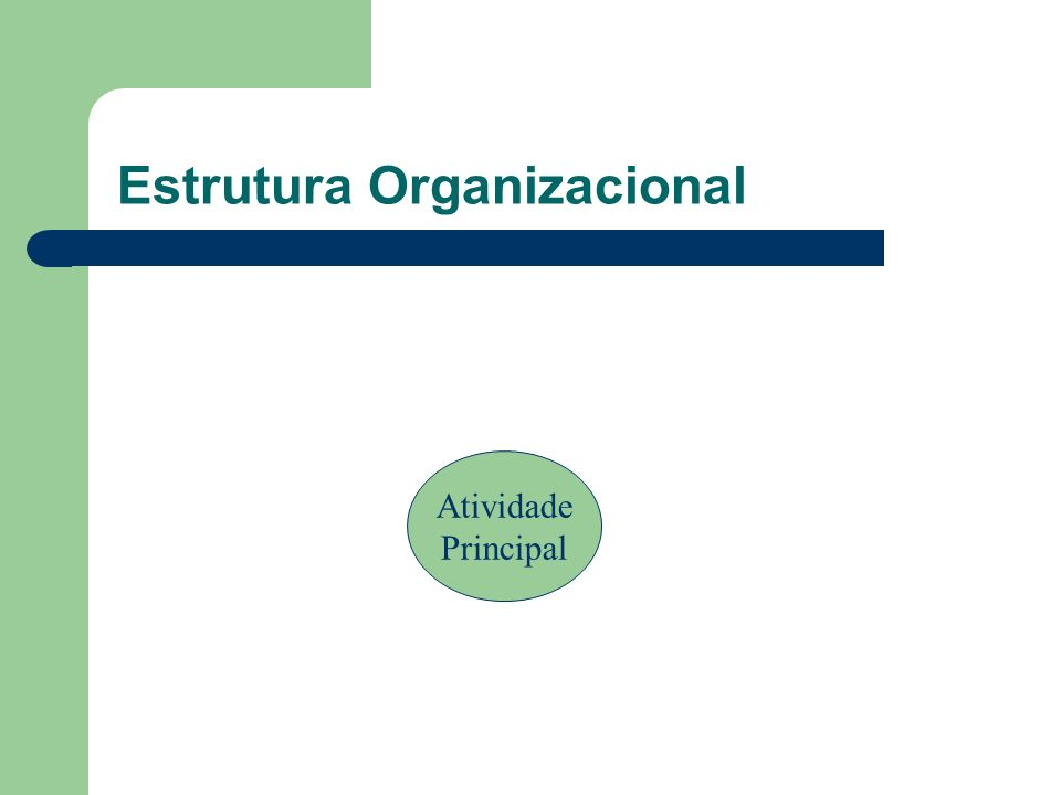 Estrutura Organizacional Atividade Principal