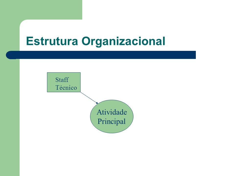 Estrutura Organizacional Atividade Principal Staff Técnico