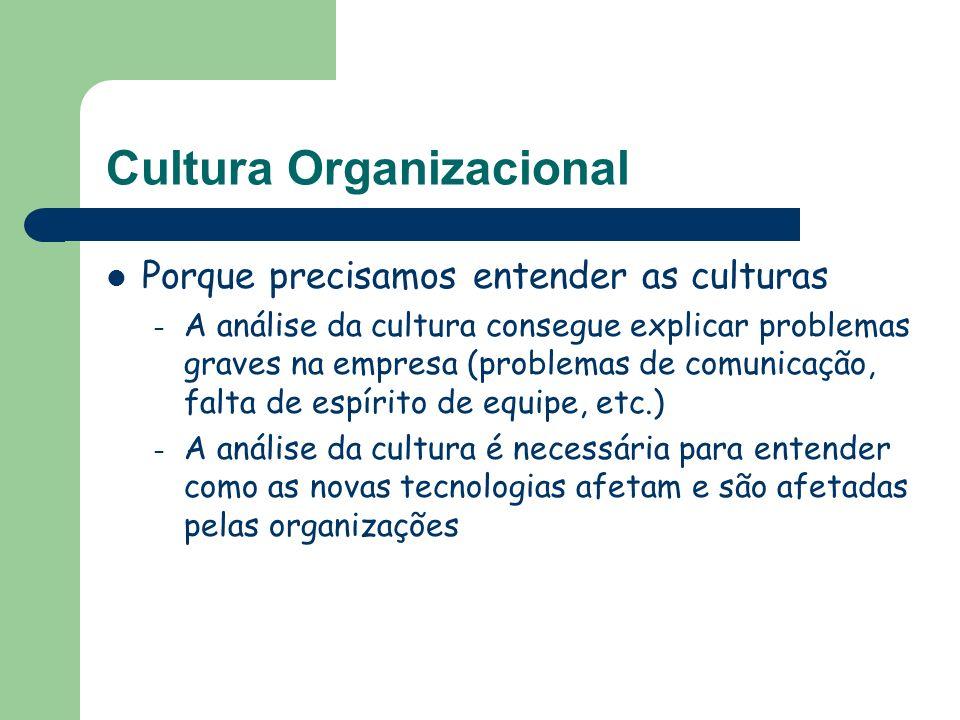 Cultura Organizacional Porque precisamos entender as culturas – A análise da cultura consegue explicar problemas graves na empresa (problemas de comun