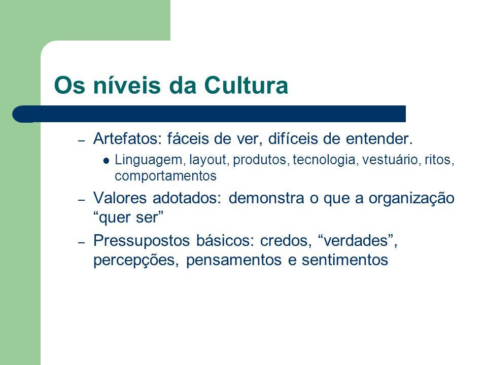 Os níveis da Cultura – Artefatos: fáceis de ver, difíceis de entender. Linguagem, layout, produtos, tecnologia, vestuário, ritos, comportamentos – Val