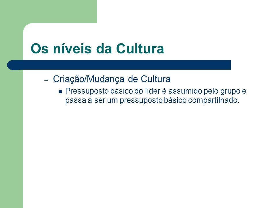 Os níveis da Cultura – Criação/Mudança de Cultura Pressuposto básico do líder é assumido pelo grupo e passa a ser um pressuposto básico compartilhado.