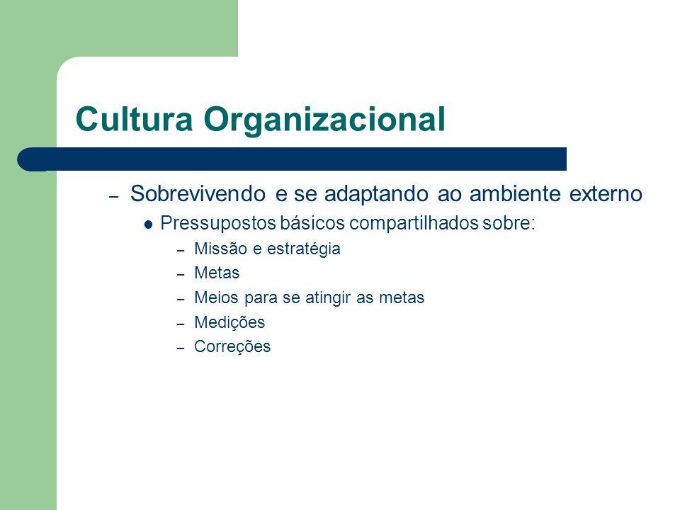 Cultura Organizacional – Sobrevivendo e se adaptando ao ambiente externo Pressupostos básicos compartilhados sobre: – Missão e estratégia – Metas – Me