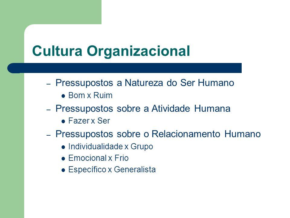 Cultura Organizacional – Pressupostos a Natureza do Ser Humano Bom x Ruim – Pressupostos sobre a Atividade Humana Fazer x Ser – Pressupostos sobre o R
