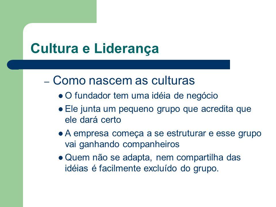 Cultura e Liderança – Como nascem as culturas O fundador tem uma idéia de negócio Ele junta um pequeno grupo que acredita que ele dará certo A empresa