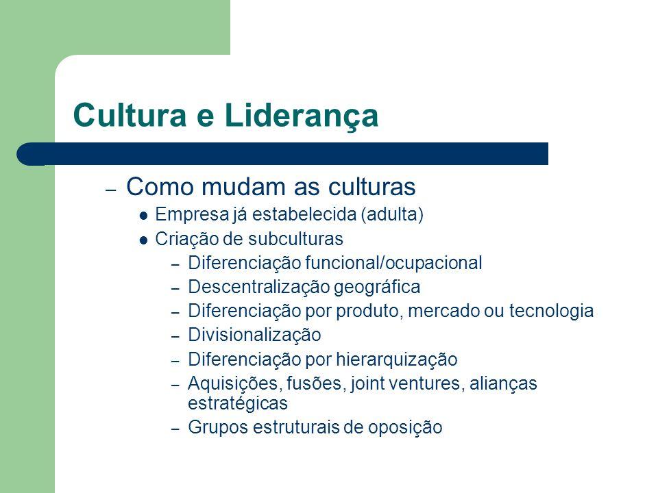 Cultura e Liderança – Como mudam as culturas Empresa já estabelecida (adulta) Criação de subculturas – Diferenciação funcional/ocupacional – Descentra