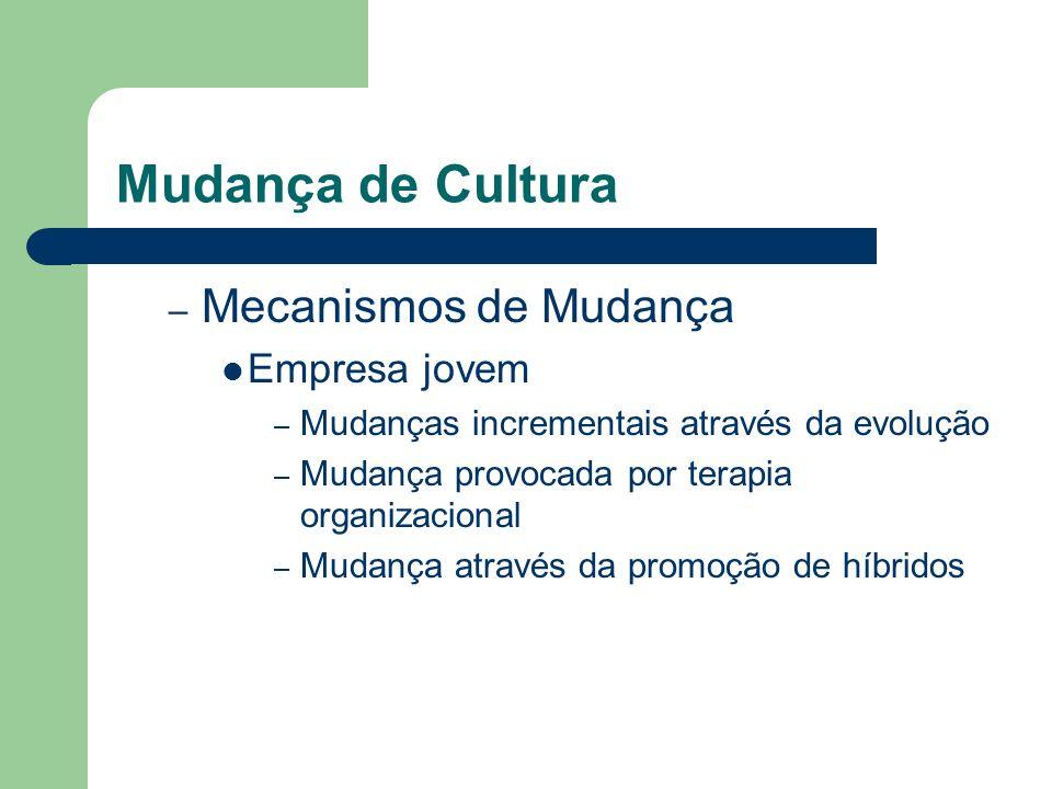 Mudança de Cultura – Mecanismos de Mudança Empresa jovem – Mudanças incrementais através da evolução – Mudança provocada por terapia organizacional –