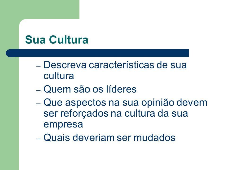 Sua Cultura – Descreva características de sua cultura – Quem são os líderes – Que aspectos na sua opinião devem ser reforçados na cultura da sua empre
