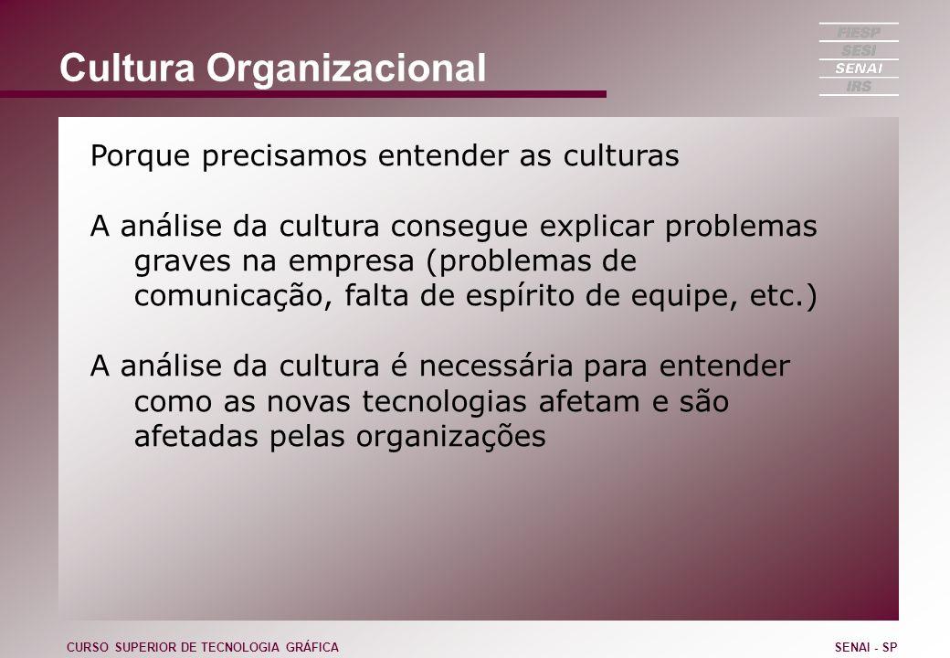 Cultura Organizacional Porque precisamos entender as culturas A análise da cultura consegue explicar problemas graves na empresa (problemas de comunic