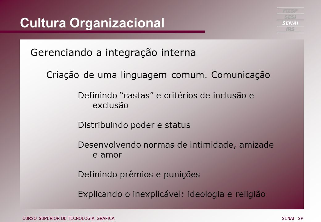 Cultura Organizacional Gerenciando a integração interna Criação de uma linguagem comum. Comunicação Definindo castas e critérios de inclusão e exclusã