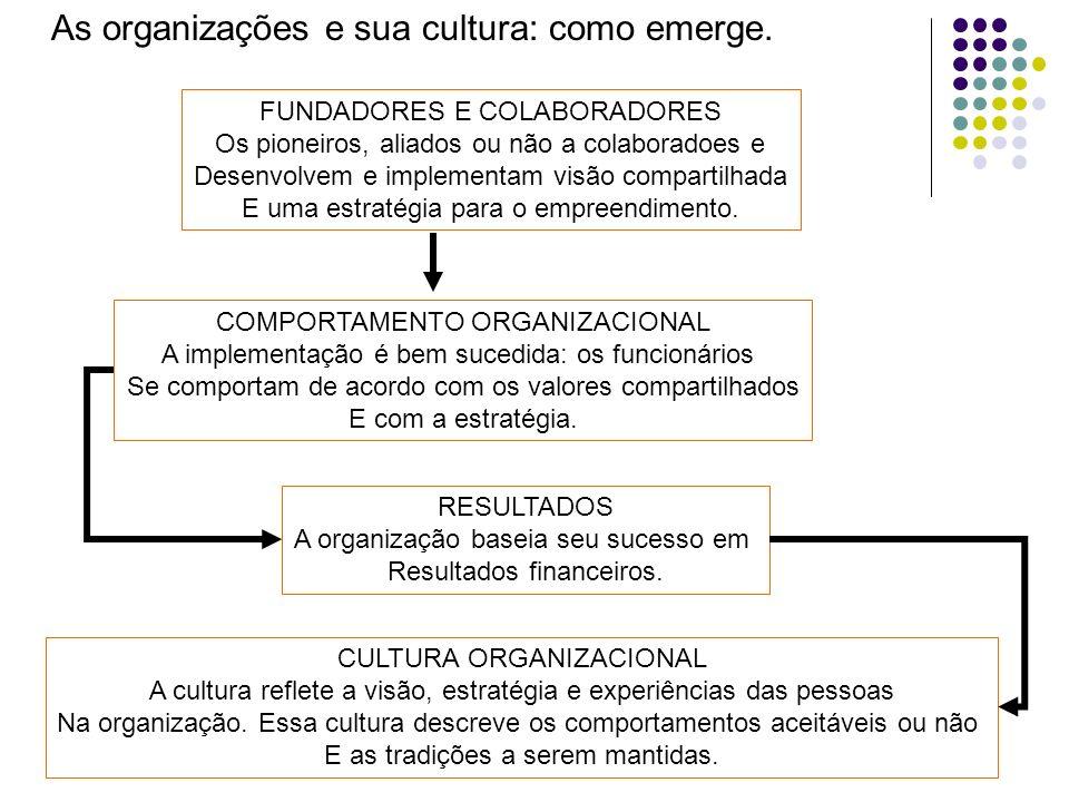 As organizações e sua cultura: como emerge. FUNDADORES E COLABORADORES Os pioneiros, aliados ou não a colaboradoes e Desenvolvem e implementam visão c
