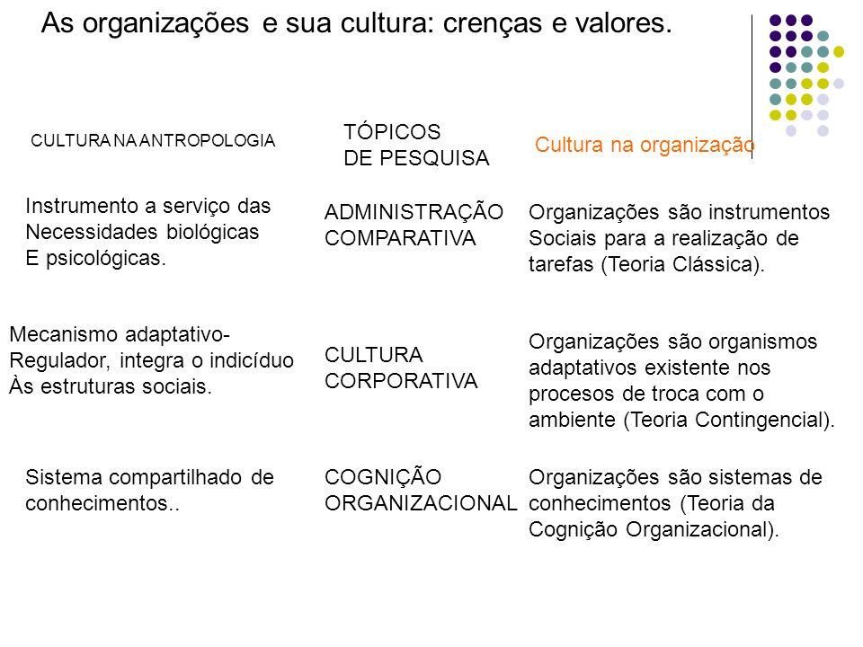 As organizações e sua cultura: crenças e valores. Instrumento a serviço das Necessidades biológicas E psicológicas. Cultura na organização TÓPICOS DE