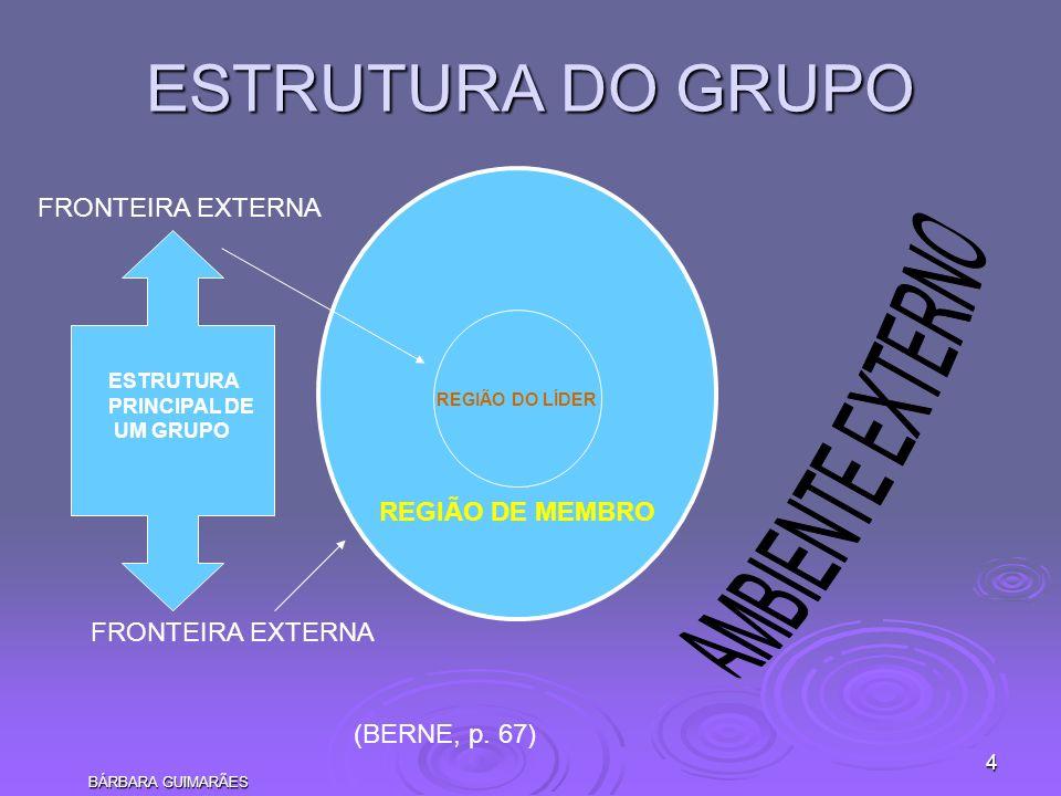 BÁRBARA GUIMARÃES 4 REGIÃO DO LÍDER REGIÃO DE MEMBRO ESTRUTURA DO GRUPO FRONTEIRA EXTERNA ESTRUTURA PRINCIPAL DE UM GRUPO (BERNE, p. 67)